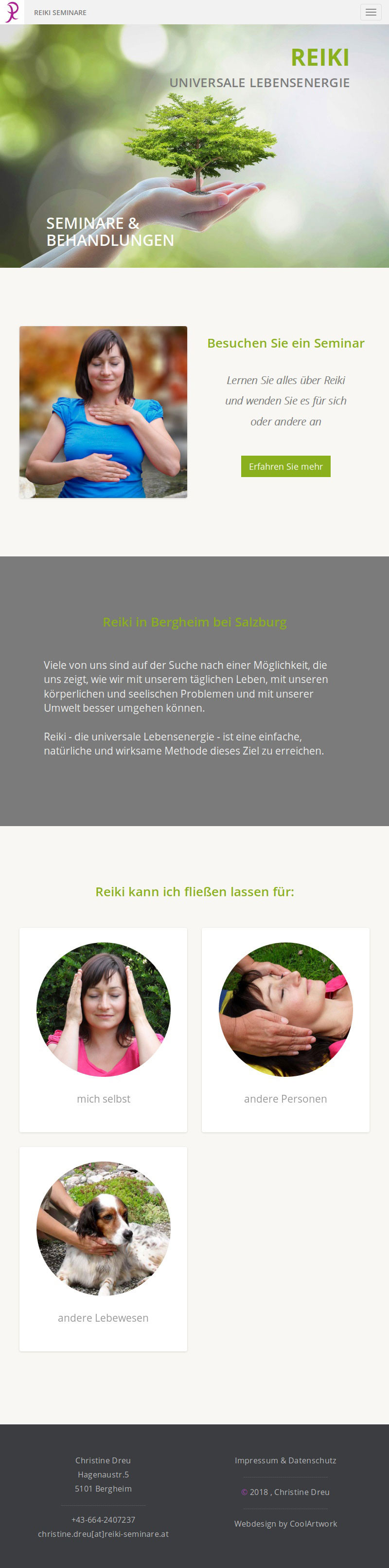 Screenshot Webseite Reiki Seminare